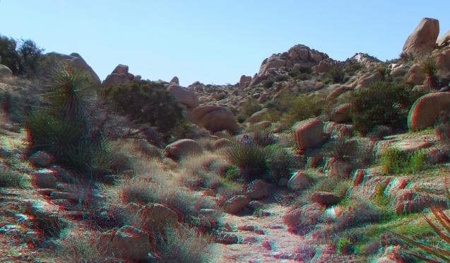 Zebra Cliffs Joshua Tree NP 1080p 3DA DSCF5709