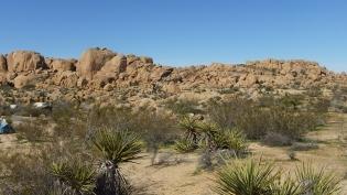 Zebra Cliffs Joshua Tree NP DSCF5645