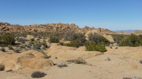 Zebra Cliffs Joshua Tree NP DSCF5655