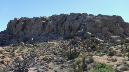 Zebra Cliffs Joshua Tree NP DSCF5690