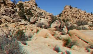 Dinos Egg Joshua Tree NP 1080p 3DA DSCF5461