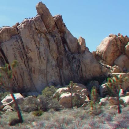 Found in the Duffle Joshua Tree NP 1080p 3DA DSCF5331