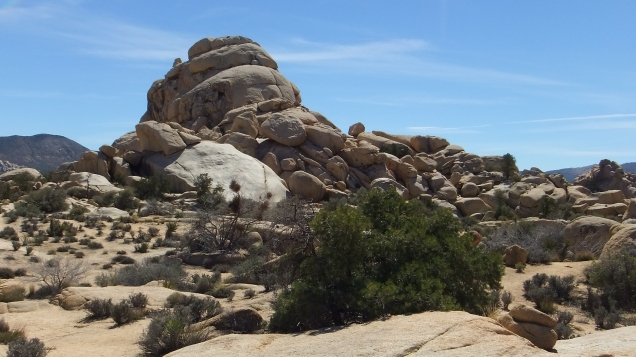 Hidden Valley Campground Outback Joshua Tree NP DSCF5477