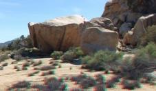Park Boulevard Rocks False Up 20 Boulder 1080p 3DA DSCF5583