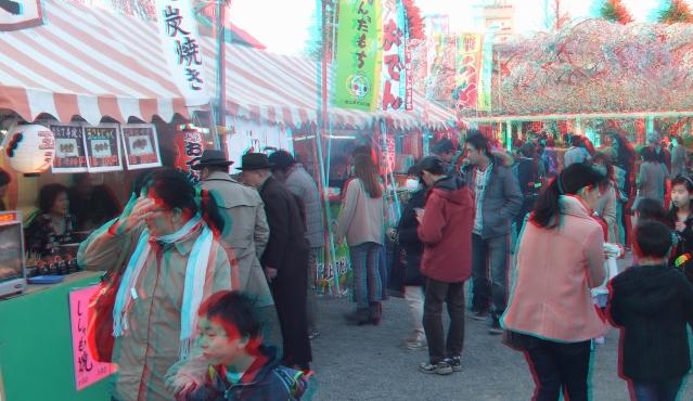 Sendai 2013 Cherry Blossoms 3DA 1080p DSCF0051