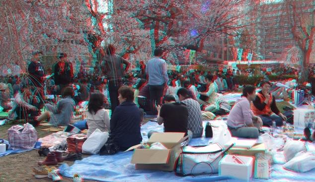 Sendai 2013 Cherry Blossoms 3DA 1080p DSCF0053