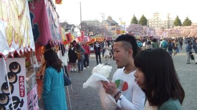 Sendai 2013 Cherry Blossoms DSCF0049