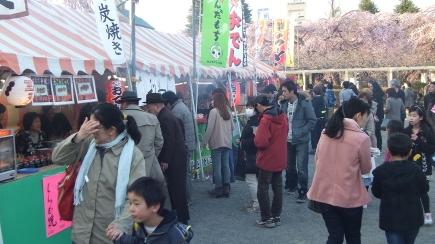 Sendai 2013 Cherry Blossoms DSCF0051