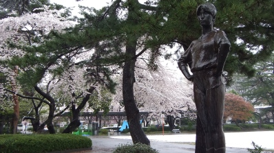 Sendai 2013 Cherry Blossoms DSCF0079
