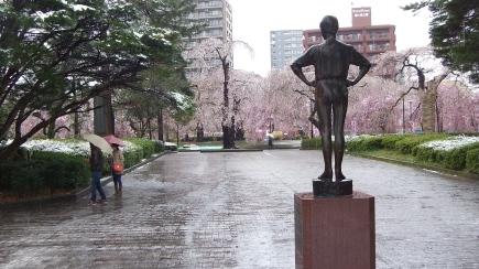 Sendai 2013 Cherry Blossoms DSCF0080