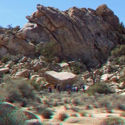 Texas Rock Joshua Tree NP 1080p 3DA DSCF5347