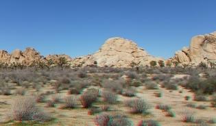 The Blob Joshua Tree NP 1080p 3DA DSCF5555