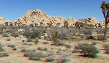 The Old Woman Joshua Tree NP 1080p 3DA DSCF5554