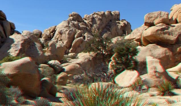 The Swidgeteria Joshua Tree NP 1080p 3DA DSCF5353
