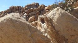 Voices Boulder Joshua Tree NP DSCF5446