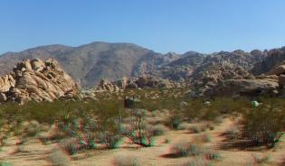 Indian Cove Group Campground 3DA 1080p DSCF6797