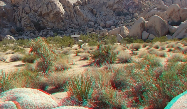 Indian Cove Group Campground 3DA 1080p DSCF6936