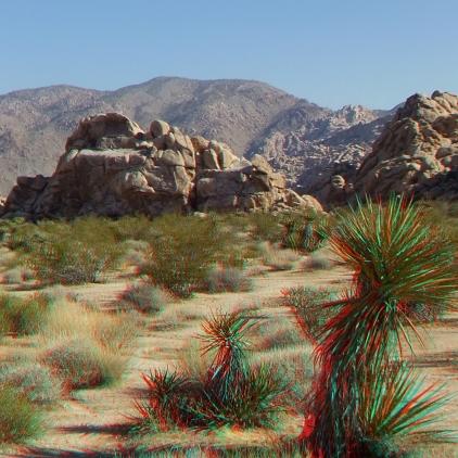 Indian Cove Group Campground 3DA 1080p DSCF6947