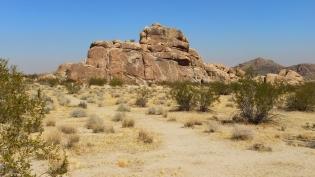 Indian Cove Morbid Mound DSCF6481