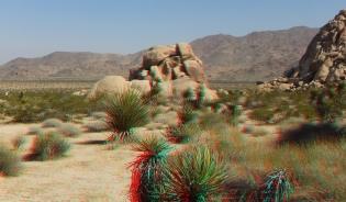 Indian Cove Pixie Rock 3DA 1080p DSCF6686