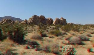 Indian Cove Valle de Duck 3DA 1080p DSCF6808