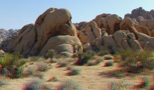 Indian Cove Valle de Duck 3DA 1080p DSCF6904