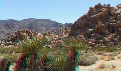 Indian Cove Condor Rock 3DA 1080p DSCF6104