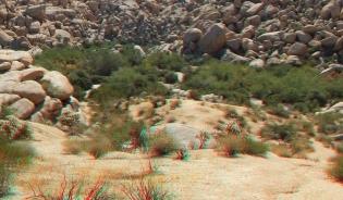 Indian Cove Johnson Canyon 3DA 1080p DSCF6558