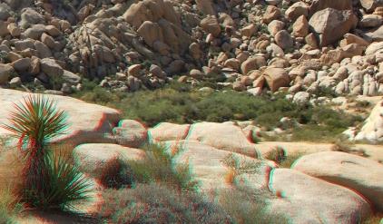 Indian Cove Johnson Canyon 3DA 1080p DSCF6575