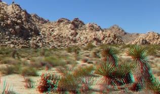 Indian Cove Joshua Tree NP 3DA 1080p DSCF6075