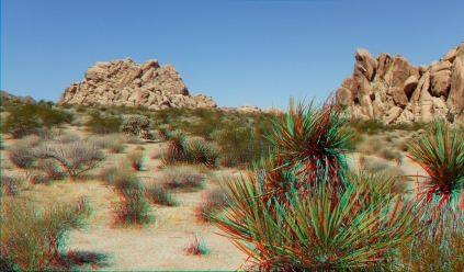 Indian Cove Joshua Tree NP 3DA 1080p DSCF6080