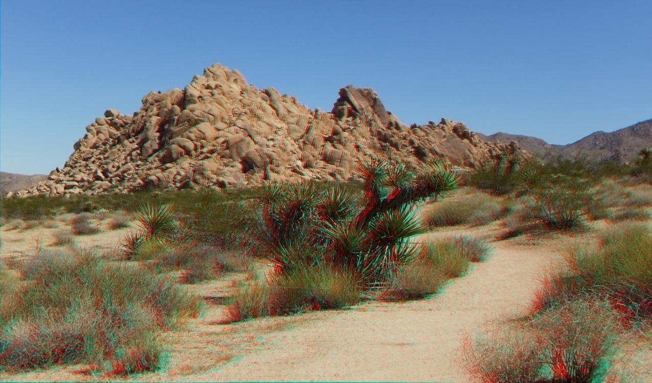 Indian Cove Nature Trail 3DA 1080p DSCF6268
