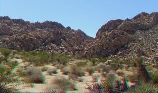 Indian Cove Nature Trail 3DA 1080p DSCF6272
