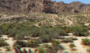 Indian Cove Nature Trail 3DA 1080p DSCF6275