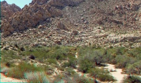 Indian Cove Nature Trail 3DA 1080p DSCF6278