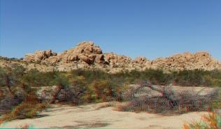 Indian Cove Nature Trail 3DA 1080p DSCF6294