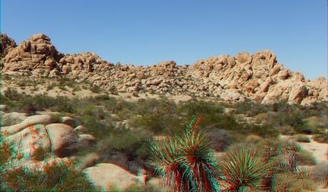 Indian Cove Nature Trail 3DA 1080p DSCF6310