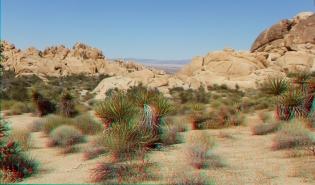 Indian Cove Nature Trail 3DA 1080p DSCF6315