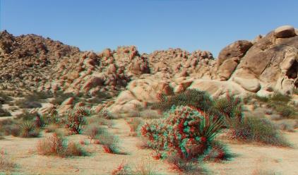 Indian Cove Nature Trail 3DA 1080p DSCF6321