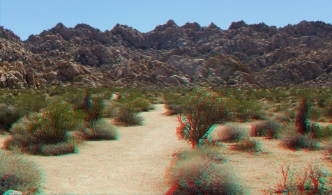 Indian Cove Nature Trail 3DA 1080p DSCF6330