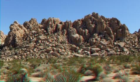 Indian Cove Nature Trail 3DA 1080p DSCF6339