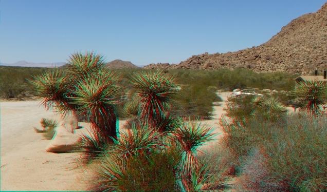 Indian Cove Rattlesnake Canyon 3DA 1080p DSCF6378