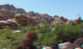 Indian Cove Rattlesnake Canyon 3DA 1080p DSCF6387