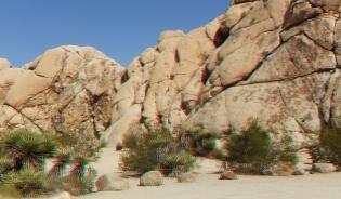 Indian Cove The Clump 3DA 1080p DSCF6695