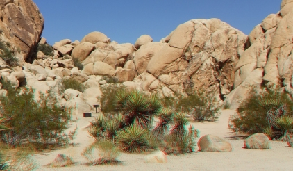 Indian Cove The Clump 3DA 1080p DSCF6696