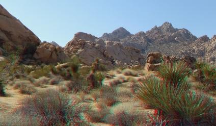 Indian Cove Nature Trail Wall 3DA 1080p DSCF6715
