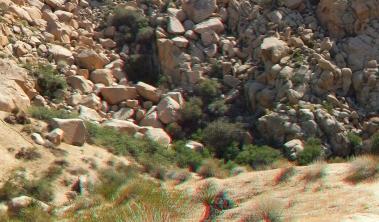 Indian Cove Sneakeye Spring area 3DA 1080p DSCF6760