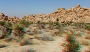 Indian Cove Western Wilderness 3DA 1080p DSCF6775