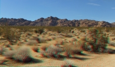 Indian Cove Forgotten Canyon 1080p 3DA DSCF6981