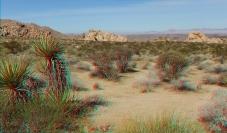 Indian Cove Western Wilderness 1080p 3DA DSCF7003